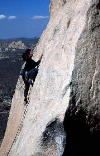 "Cathy Dicker on ""Charlton Heston is My President"" 5.9. Joshua Tree, CA..."