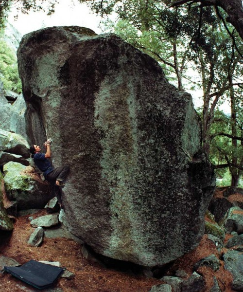 Wills Young on Bruce Lee (V8).