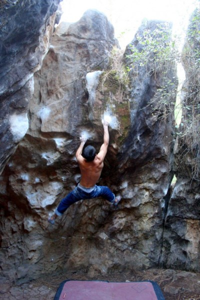 Anthony on Gold Wall Direct V7