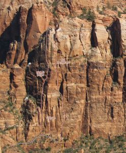 Carbuncle Buttress - Risk Management III 5.10+/11- A0 - Zion National Park, Utah, USA. Click to Enlarge