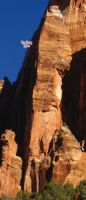 East Temple - Fang Spire IV 5.9 C3 - Zion National Park, Utah, USA. Click to Enlarge