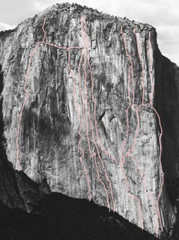 El Capitan - Flight of the Albatross A3 5.8 - Yosemite Valley, California USA. Click to Enlarge