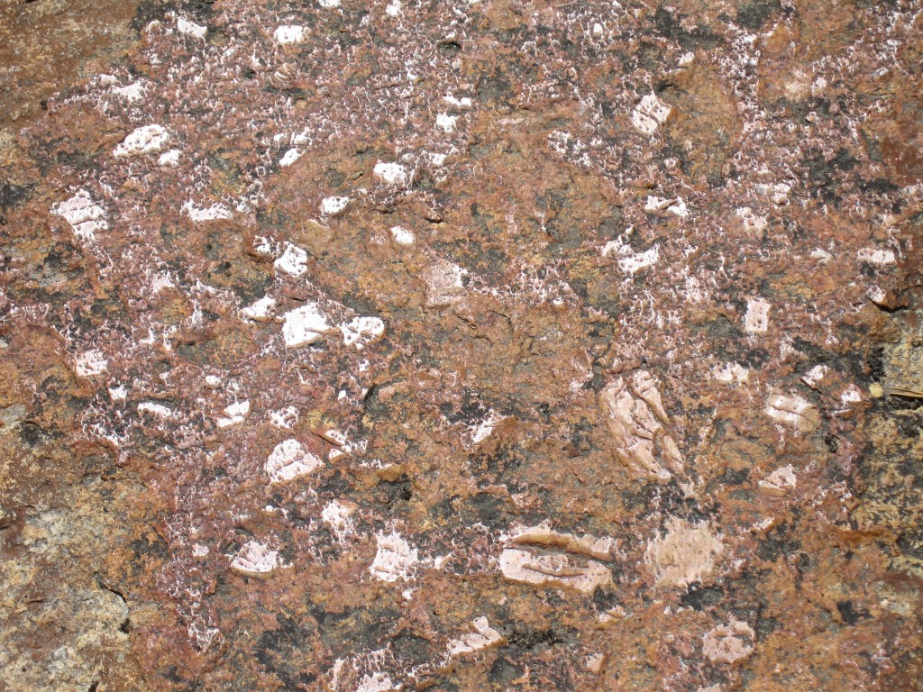 geology quiz 2 Geology chapter 1 quiz geology is the study of the solid matter of celestial bodies true false 2: continental crust is denser than oceanic crust.