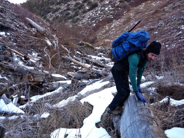 Taken 1-7-2012. Bairs Creek approach to Mt. Williamson.