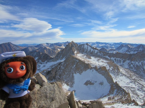 Cheburashka on top of Dade on New Year's Eve (12/31/2011)! He climbed ...
