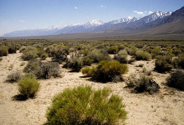 The 10,000-foot high eastern escarpment