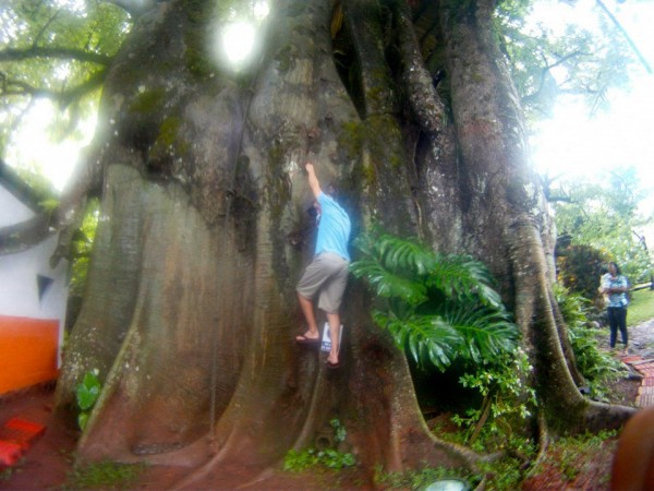 Climbing Galapagos style
