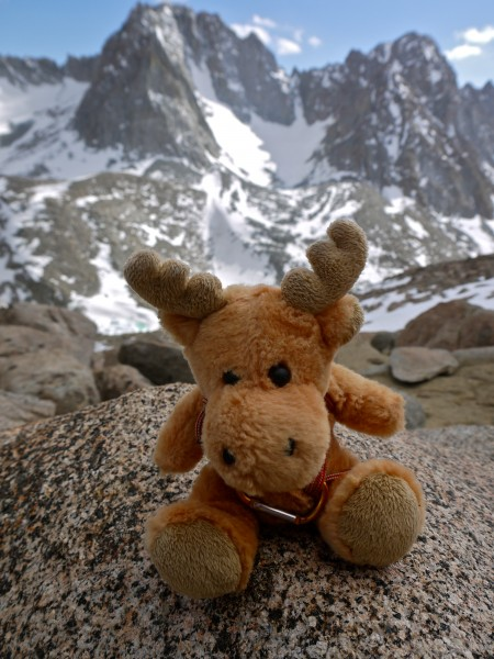 Mini-moosie rockin' the Couloir!