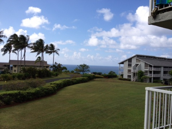 view from my deck, or lanai or whatever they call it over here.