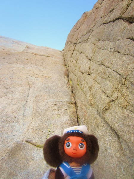 Cheburashka in the Red Dihedral