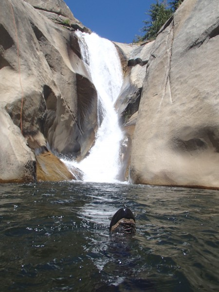 Swimming away from one of the falls.