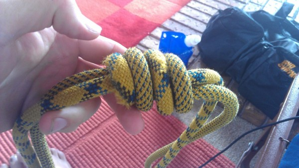 dressed  both tails on the right, notice the alternating pattern of st...