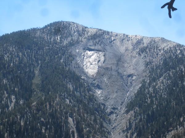 N. face Pine mountain