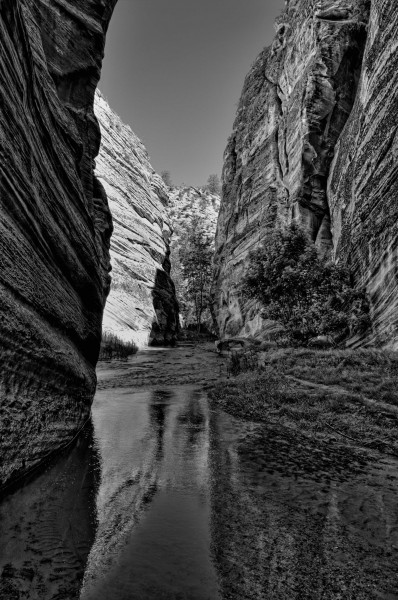 Rock Canyon, Zion