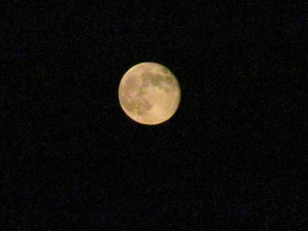 Harvest Moon from Nogales, AZ <br/>