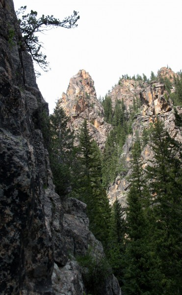 Spring Creek Tower