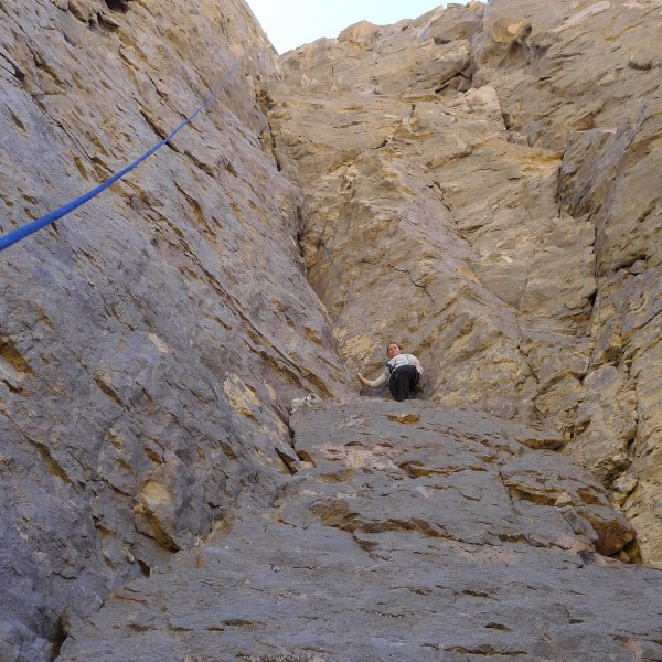 Amy Wilkins on the new fun 5.9.