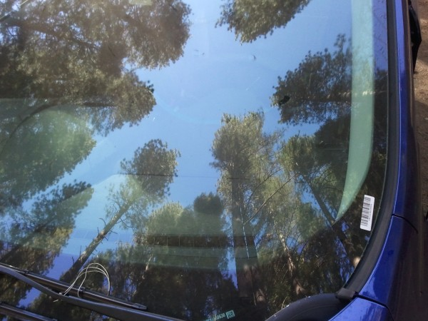 I know it's a car windshield, but it's the closest picture I have to w...