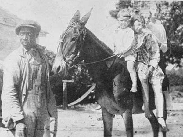 Children's mule 1914