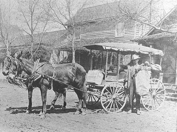Mail Mule