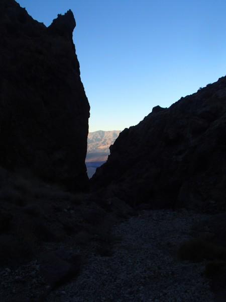 Dawn from NF Cerberus
