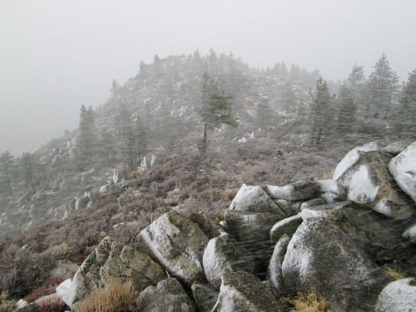 2 dec 2012. Summit photo