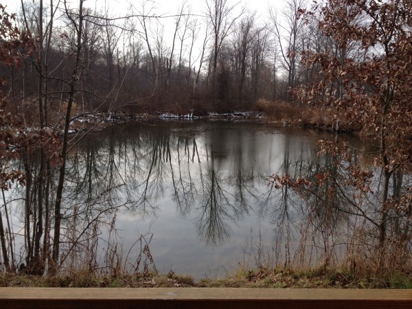 Pond my Dad built when were weeeeeee little to learn to ice skate.