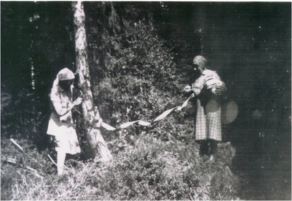Collecting the raw material from Birch. My grandmother Lina to the lef...