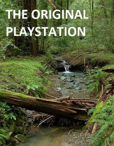 The ONLY playstation of worth.