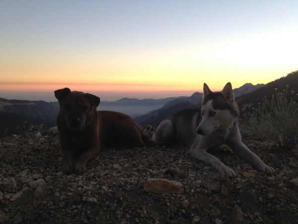 Troy and Odesssa enjoying a sunset up the crest