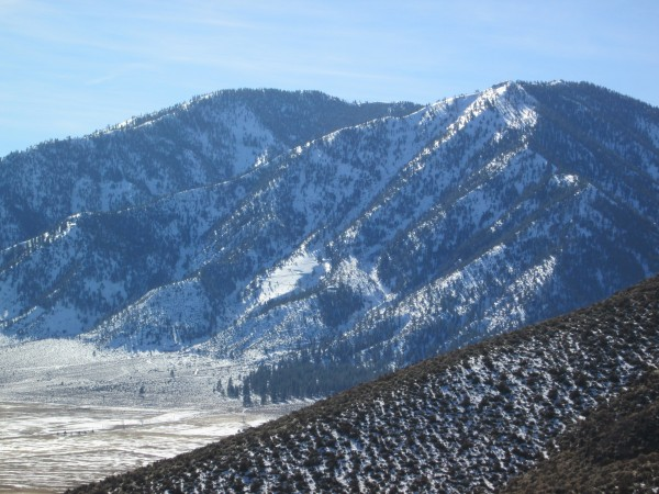 30jan2013, from Sunny Delight, Carson Valley Sentinel. <br/> Note the swee...