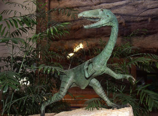 Db_image5 <br/>