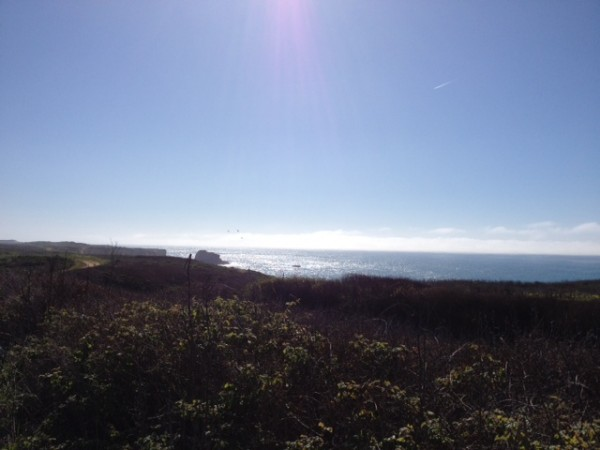 About 8 miles north of Santa Cruz on Highway 1.  Beautiful day.  Great...