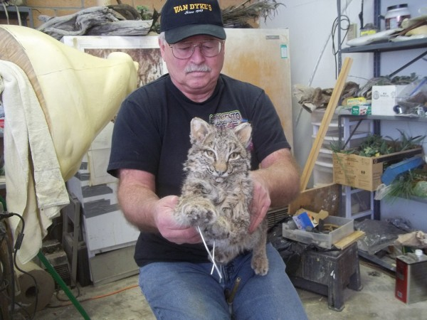 Dave working on his first life size bobkitty!