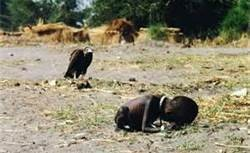 vulture & starving child