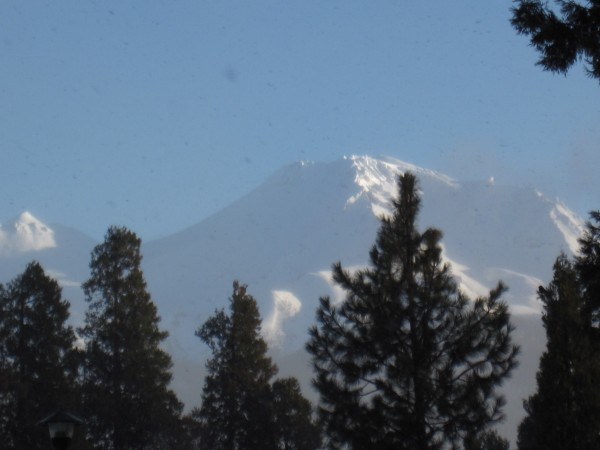 Mt. Shasta (1/6/13).