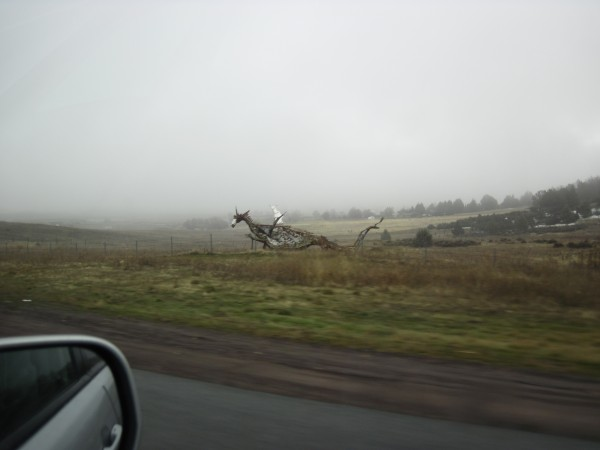 Dragon - a bit north of Yreka, CA.