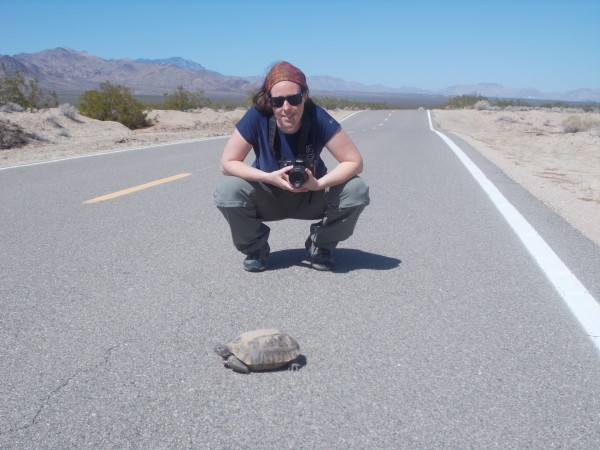 Christina and the season's first tortoise sighting in Mojave National ...