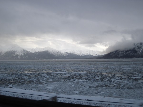 Toured the Turnagain Arm of the Cook Inlet before my flight home on Su...