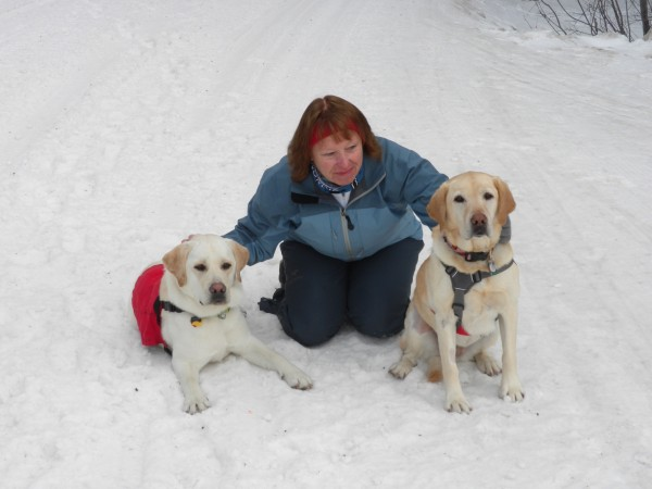 Fred and Ethel, working avalanche dogs. <br/>