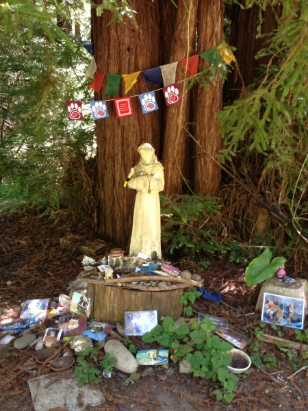 Lovely animal memorial in the Soquel Hills