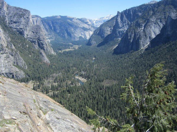 View of the Valley from the top of East Buttress. I think you can actu...