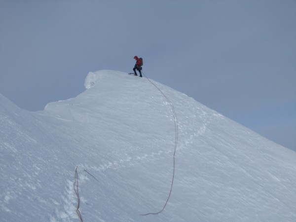 On the Moose's Tooth corniced main summit (pic courtesy of Steve T...