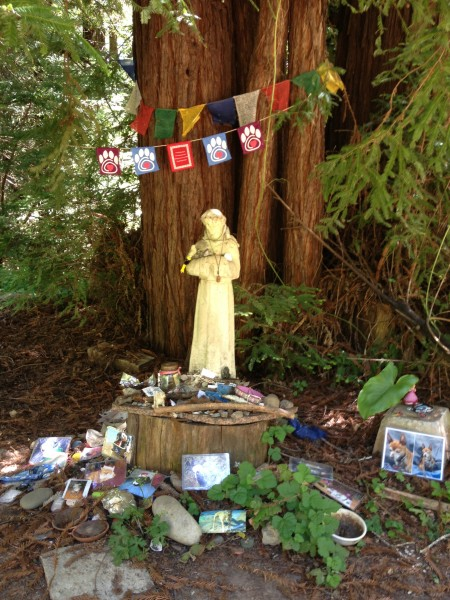 Animal memorial grove, Land of Medicine Buddha, Santa Cruz Mtn.