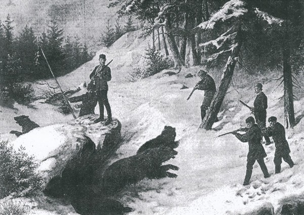 Shooting bear, Dalarna, Sweden, January 1877