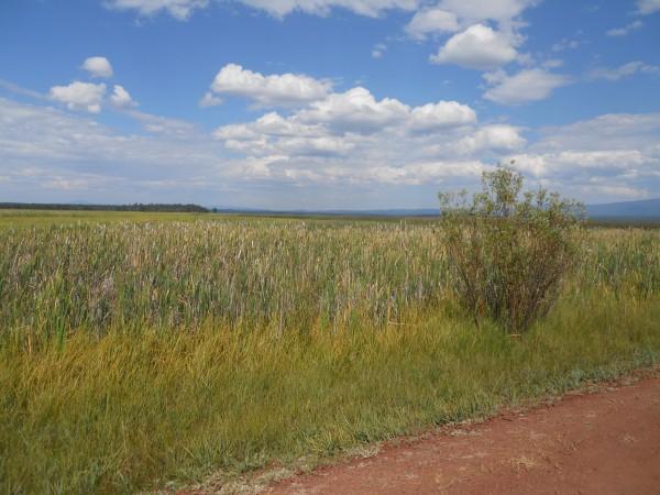 Upper Klamath Basin