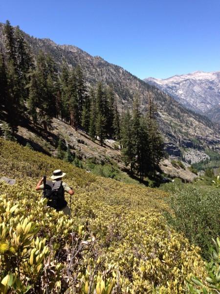 Bushwhacking down Cartridge Creek. Few people go down this... we found...
