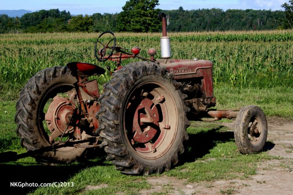 1951 Farmall H on my sister farm. this tractor has been on the same fa...