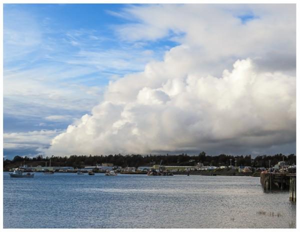 Kenai Harbor