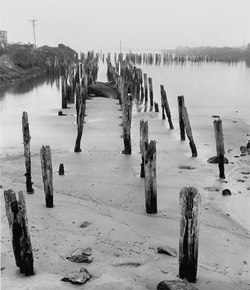Pilings, Bandon, OR